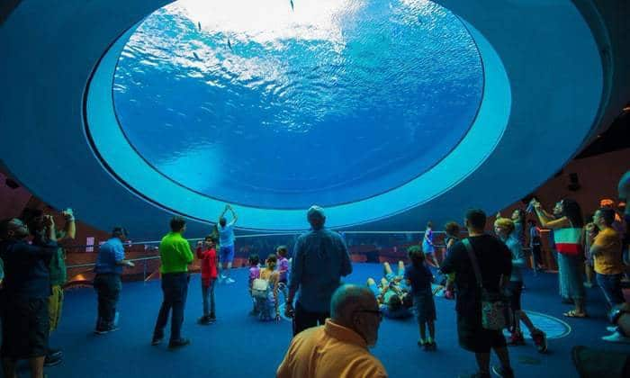 Free entry, discounts at 25 museums, including new Frost Science Museum