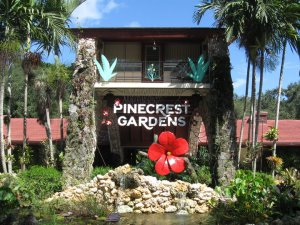2021 Pinecrest Gardens Fine Arts Festival to be held online